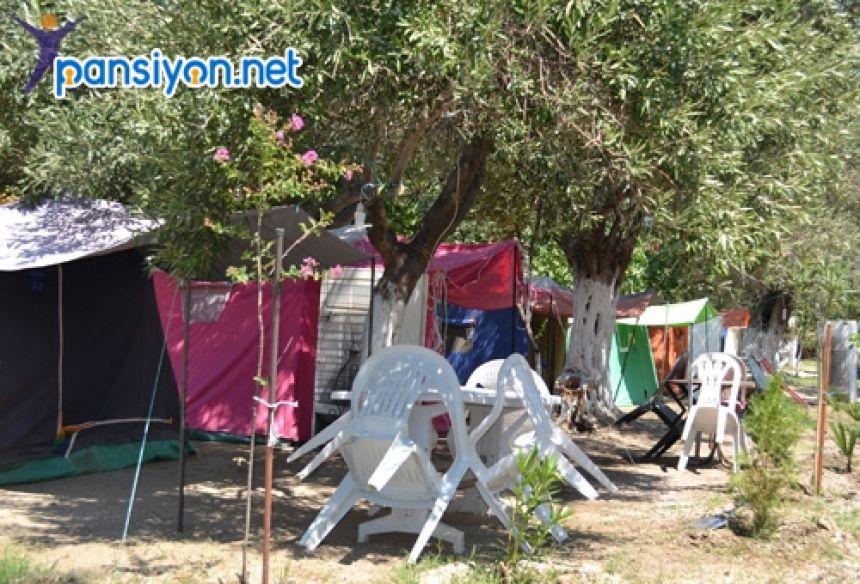 Ege Öğretmenler Çadır Kamp
