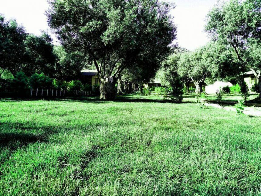 Santa Assos Bungalow Evleri