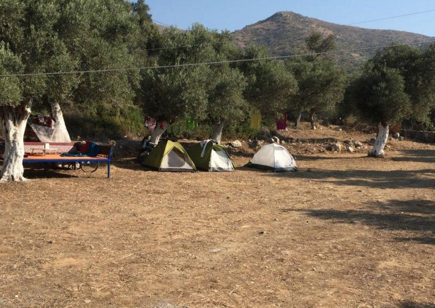 Nezihat Abla Kamp